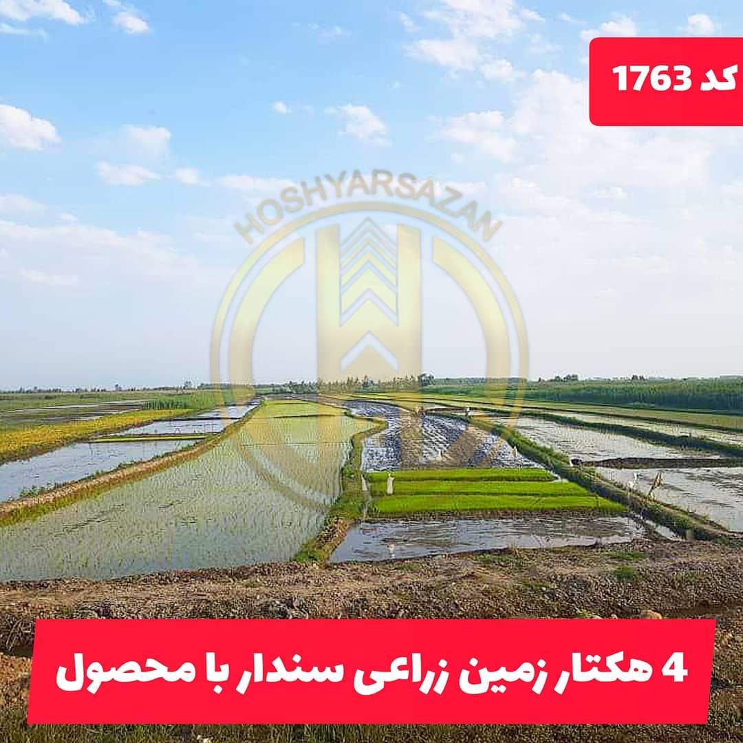 زمین 4هکتاری زراعی